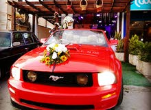 Renting Ford cars, Mustang 2009 for rent in Zarqa city
