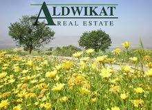 ارض مميزة للبيع في منطقة ام العمد على شارعين مساحة الارض 12 دونم