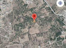 بيع اراضي سكنية في مخيليف . الحبر.
