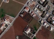 ارض مساحة دونم للبيع بمنطقة تلعة الذهب على شارع