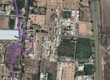 ارض 1192م للبيع - طريق المطار خلف فندق واحة النخيل