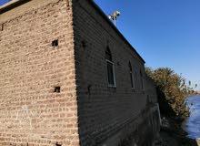 تبرع لتجديد وصيانة مسجد بصعيد مصر