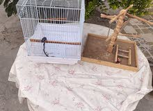 cage with wood stand