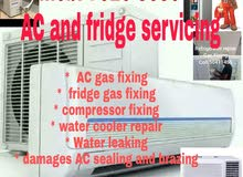AC and fridge services
