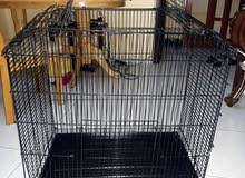 stainless steel cage 1 time used /قفص من الفولاذ المقاوم للصدأ مستخدم مرة واحدة