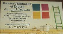 Travaux Peinture Batiment Et Divers