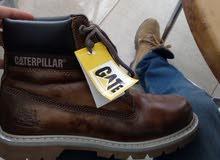 Chaussures Caterpillar Colorado homme