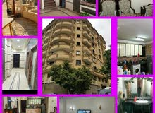 in Giza apartment More than 5 for rent