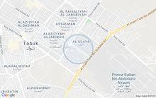 Al Olayya neighborhood Tabuk city - 224 sqm apartment for rent