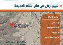 فلج الشام الجديده//600م//ارض مستوويه ونظيفه قريب الخدمات//