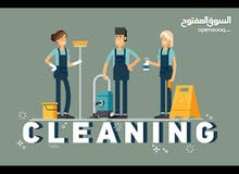 blue care .. cleaning service