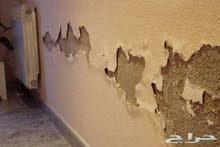 معالجه الموالح والرطوبه من الجدران وعمل الدهانات والديكور