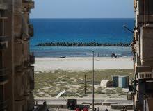 شقة اكسترا لوكس 120م خامس نمرة من البحر في شاطئ النخيل الاسكندرية