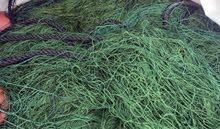 للبيع خيط 12الرغب 8ابوع 6قطع اللون اخضر