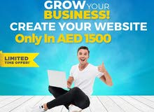 Business website now only in 1500 AED