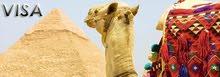 تاشيرة مصر مستعجلة