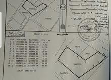 ارض للبيع في وادي اللوامي جنب مكتب الوالي