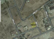 ارضين قريب للبحر -  ابو ظلوف
