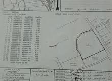 ارض زراعية مساحة 5200 م في صحار