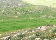 ارض في الاردن بجانب جمرك عمان الجديد