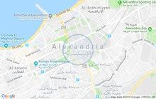 مطلوب ارض للايجار بالاسكندرية