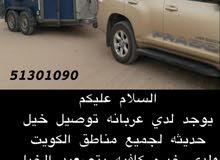 نقل خيل جميع مناطق الكويت تلفون / 96685569 خدمة 24 ساعه