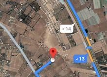 للبيع ارض 4.8 دونم في ام العمد طريق المطار