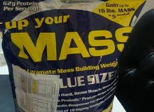 up your mass mhp 10lbs