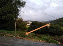 قطعة ارض للبيع مساحة 804 مفرزه منطقه بدر الجديده من اراضي دابوق من المالك مباشره