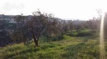 بسعر معقووول  قطعة ارض مساحة 700 متر مربع - لواء الكورة - دير ابي سعيد - الحي الشرقي