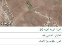 ارض زراعية للبيع من المالك مباشرة - ارينبة الغربية – حوض 4 الجنوبي – المساحة 18 دونم