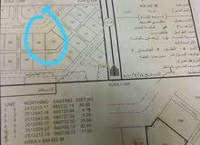 ارض بمساحة 800 متر في سيح الشخابيط 3 للبيع عاااجل