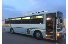 حافلة هونداي ابيض 48 راكب