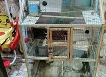 قفص البيع مال طيور حب مع بيوت تكاثر