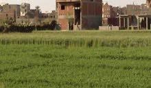 ارض للبناء او الزراعه للبيع في طنطا