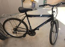دراجة هوائية للبيع bicycle for sale