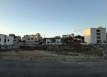 ارض 500م في ابو نصير حي الضياء الجبيهة