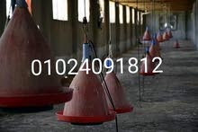 للإيجار عنابر دواجن أو محطات دواجن في الفيوم