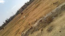 قطعة ارض للبيع في السيدة عائشة /مساحة 1000م