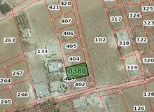 ارض 500م للبيع - ياجوز - حي الرشيد- مثلث الهباهبه