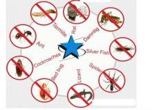 القضاء على جميع أنواع الحشرات بالضمان