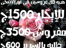 شقه130م مميزه 3مقفول3مفتوح4بلكونه2باب شقه لكل عروسين للايجار او البيع