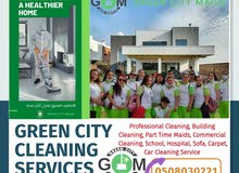 Sofa Cleaning Green City Maids