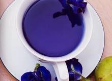 متوفر شتلات الشاي الازرق او بازلاء الزهور