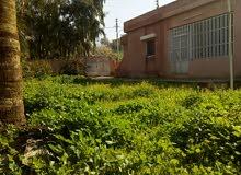 منزل مستقل للبيع (الاغوار - ديرعلا - معدي)