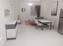 Fully Furnished 2 Bed room Flat for RENT