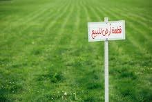 6 هكتارات للبيع طريق بن يوسف