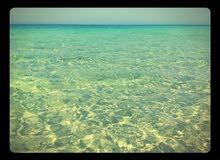 قطعة ارض علي البحر في شط البدين