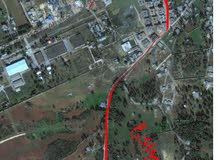 قطعة ارض خلف غابة البلنج بعقد بيع وشراء من صاحب الارض