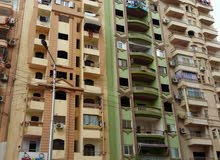 apartment for sale in Mansoura- Toreel Area